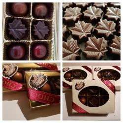 Chocolats noirs 70 % cacao au beurre d'érable -12 unités